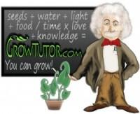 GrowTutor